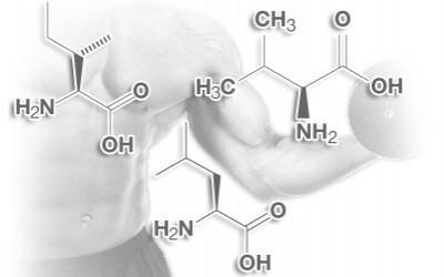 BCAA – trys svarbiausios aminorūgštys sportuojantiems