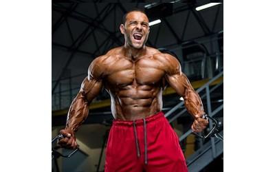 Kodėl auga raumenys? II dalis - mechanizmai