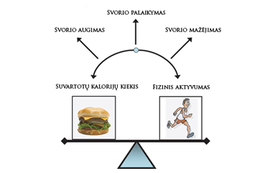 Mitybos pagrindai: energijos pusiausvyra