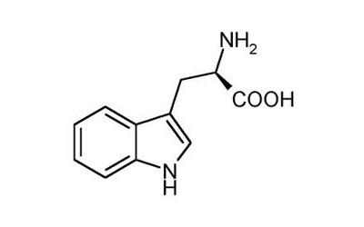Triptofanas – ne tik augimo hormono sekrecijos skatintojas!